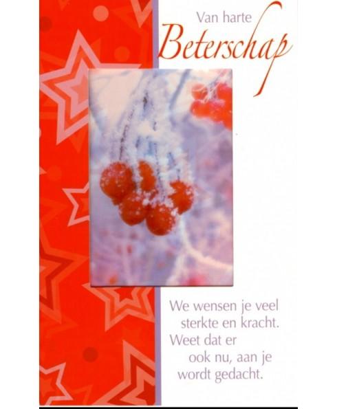 Van harte beterschap, kerst.