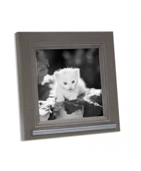 Fotolijst huisdier met asbuisje, grijs/bruin