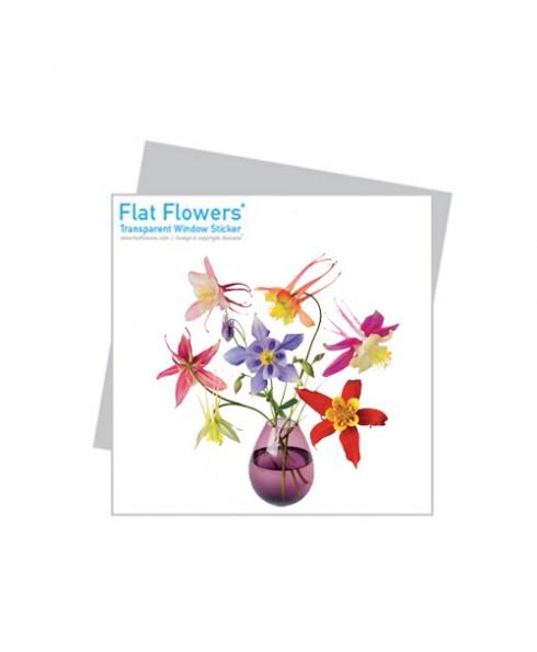 Flatflower 18