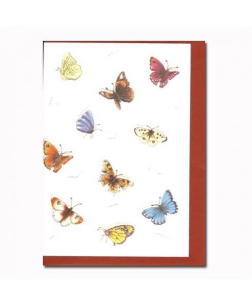 Klein kaartje vlinders.