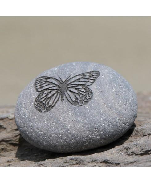 Wenssteen Vlinder