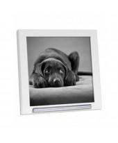 Fotolijst huisdier met asbuisje wit