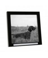 Fotolijst huisdier met asbuisje zwart