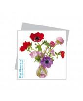 Flatflower 3