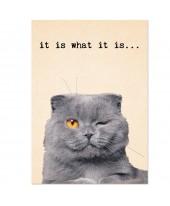 Postkaart it is what it is