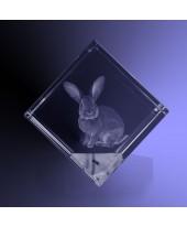 Huisdier 3d in kubus groot