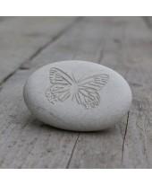 Wenssteen Vlinder wit