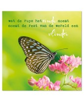 Wenskaart Vlinder