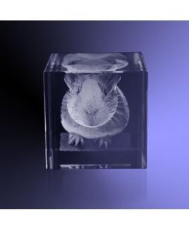 Huisdier 3d in kristal vierkant