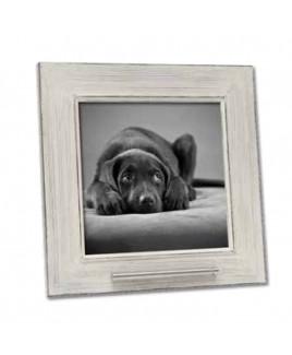 Fotolijst huisdier, wit met as voorziening.