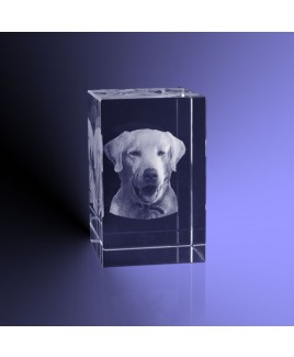 Foto huisdier 3d in kristal