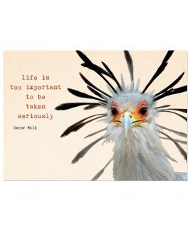 Postkaart tekst Oscar Wild