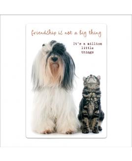 Postkaart Friendship