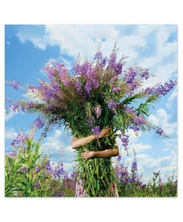 Wenskaart bos bloemen