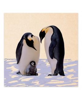 Wenskaart Familie pinguïn